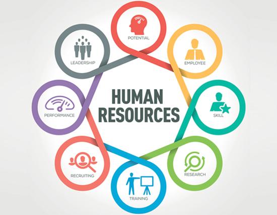 Pentingnya HRD dalam Perusahaan